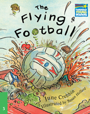 Cambridge Storybooks Level 3 The Flying Football