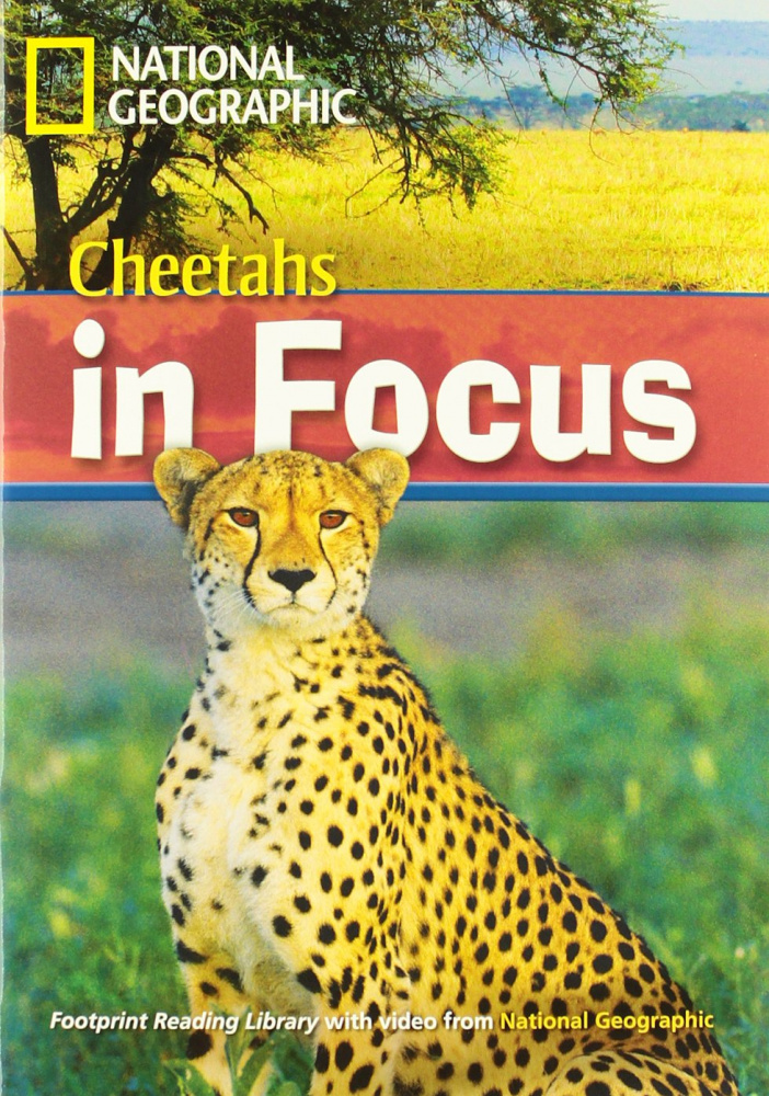 Fotoprint Reading Library B2 Cheetah Chase! with CD-ROM