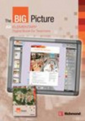 The Big Picture Elementary Digital Book