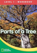 World Windows Science 1: Parts Of A Tree Workbook