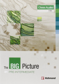 The Big Picture Pre-Intermediate Class CD