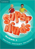 Super Minds Level 3 Wordcards (Pack of 83)
