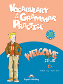 Welcome Plus 6 Vocabulary & Grammar practice