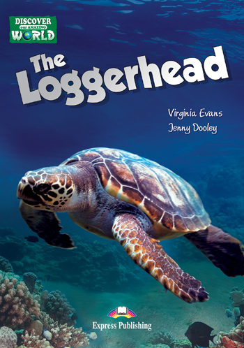 The Loggerhead