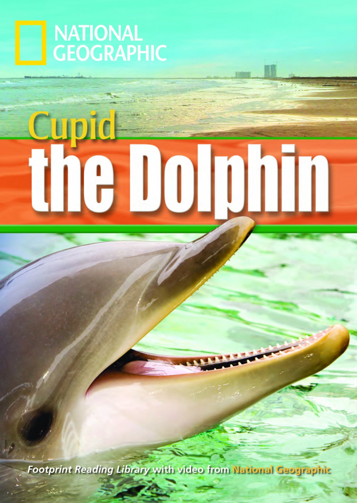 Fotoprint Reading Library B1 A Dolphin Named Cupid